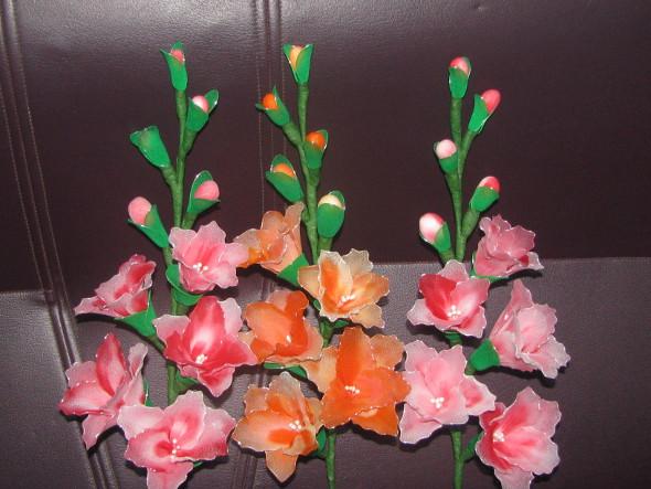 Gladiolus Nylon Stocking Flowers