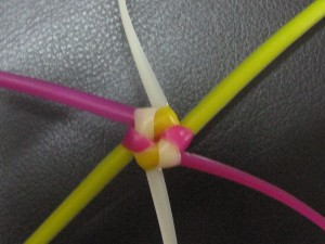 Nellikai Basket Knot